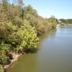 Streambank erosion on the Auglaize river