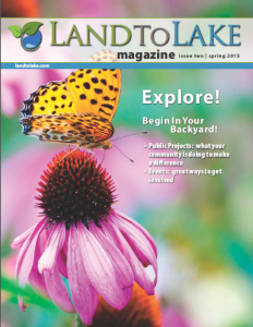 Issue 2   Spring 2015