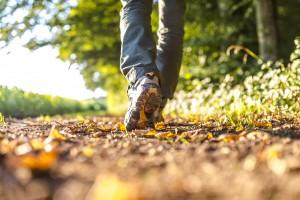 Hike a trail!